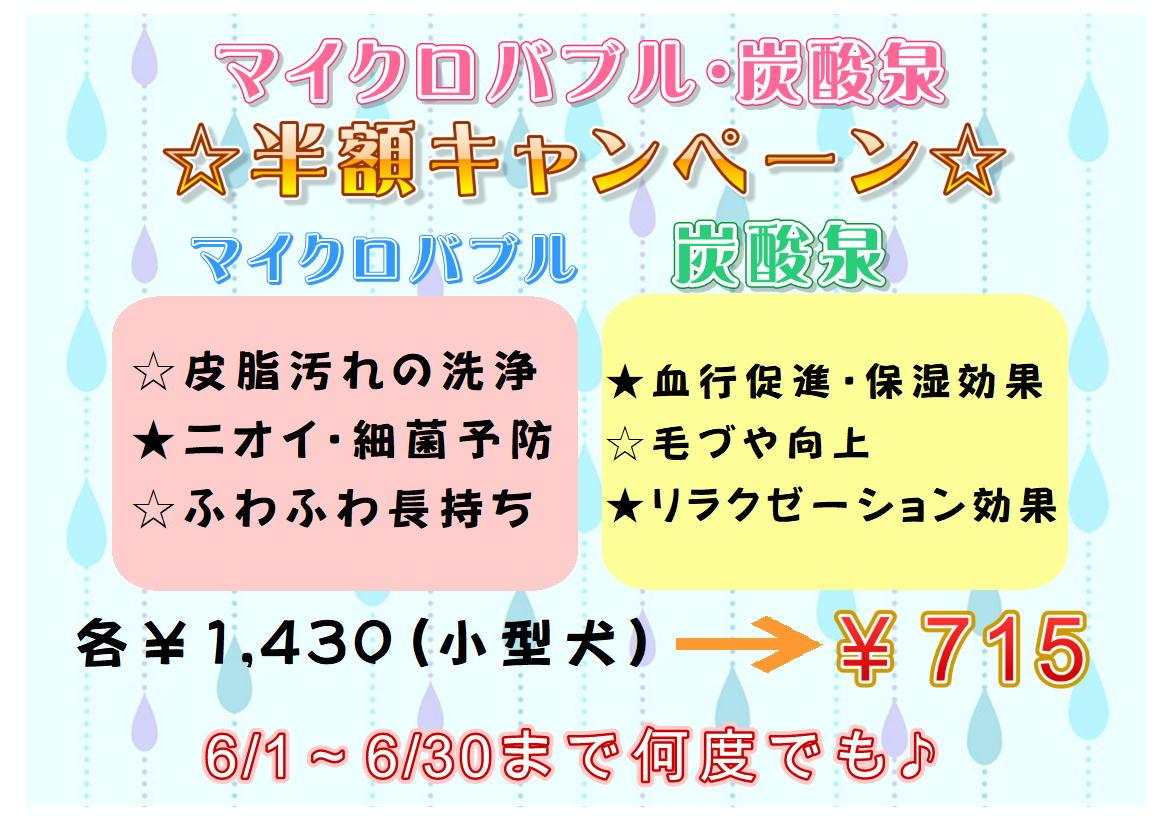 6月★マイクロバブル&炭酸泉半額キャンペーン