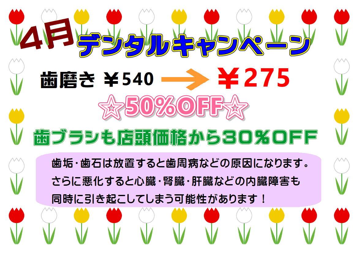 4月★デンタルキャンペーン