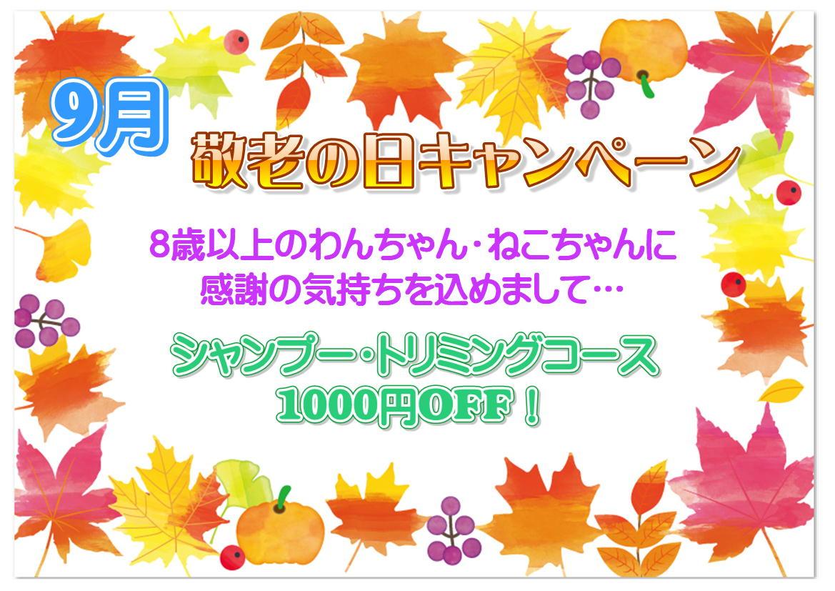9月★敬老の日キャンペーン
