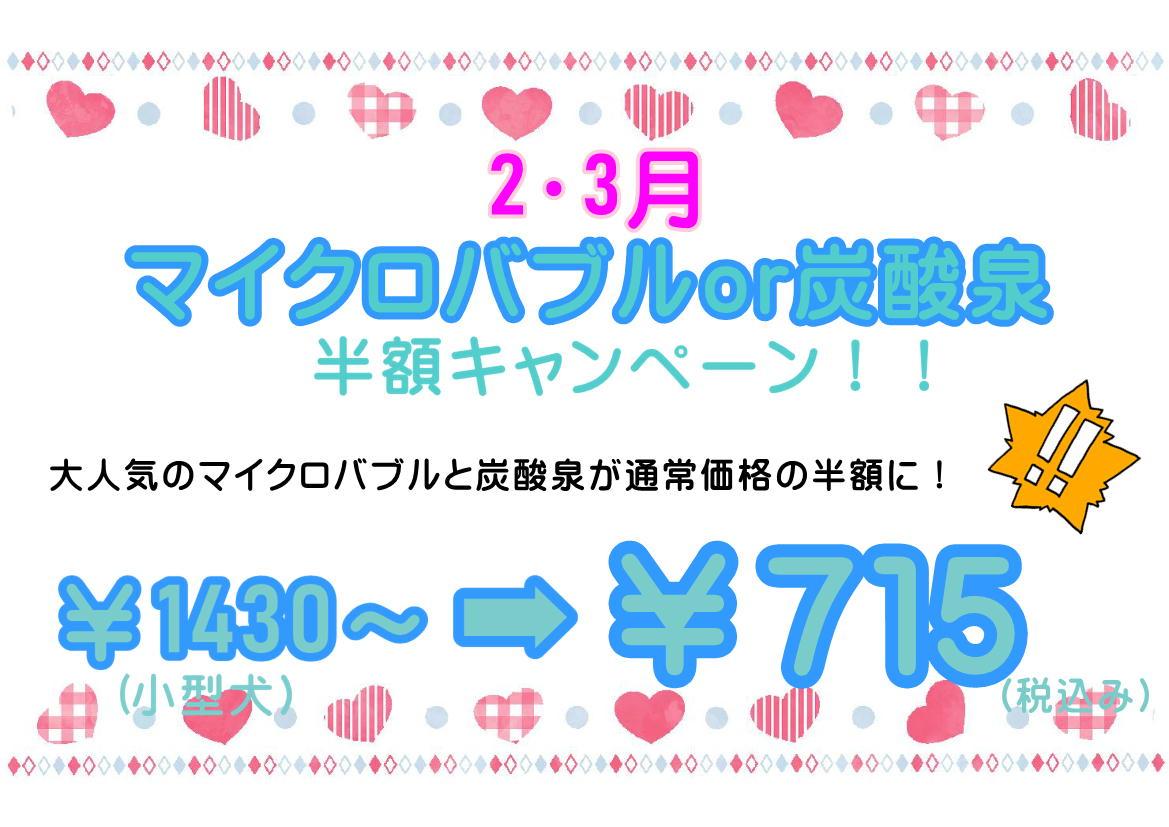 2月&3月★マイクロバブル・炭酸泉半額キャンペーン