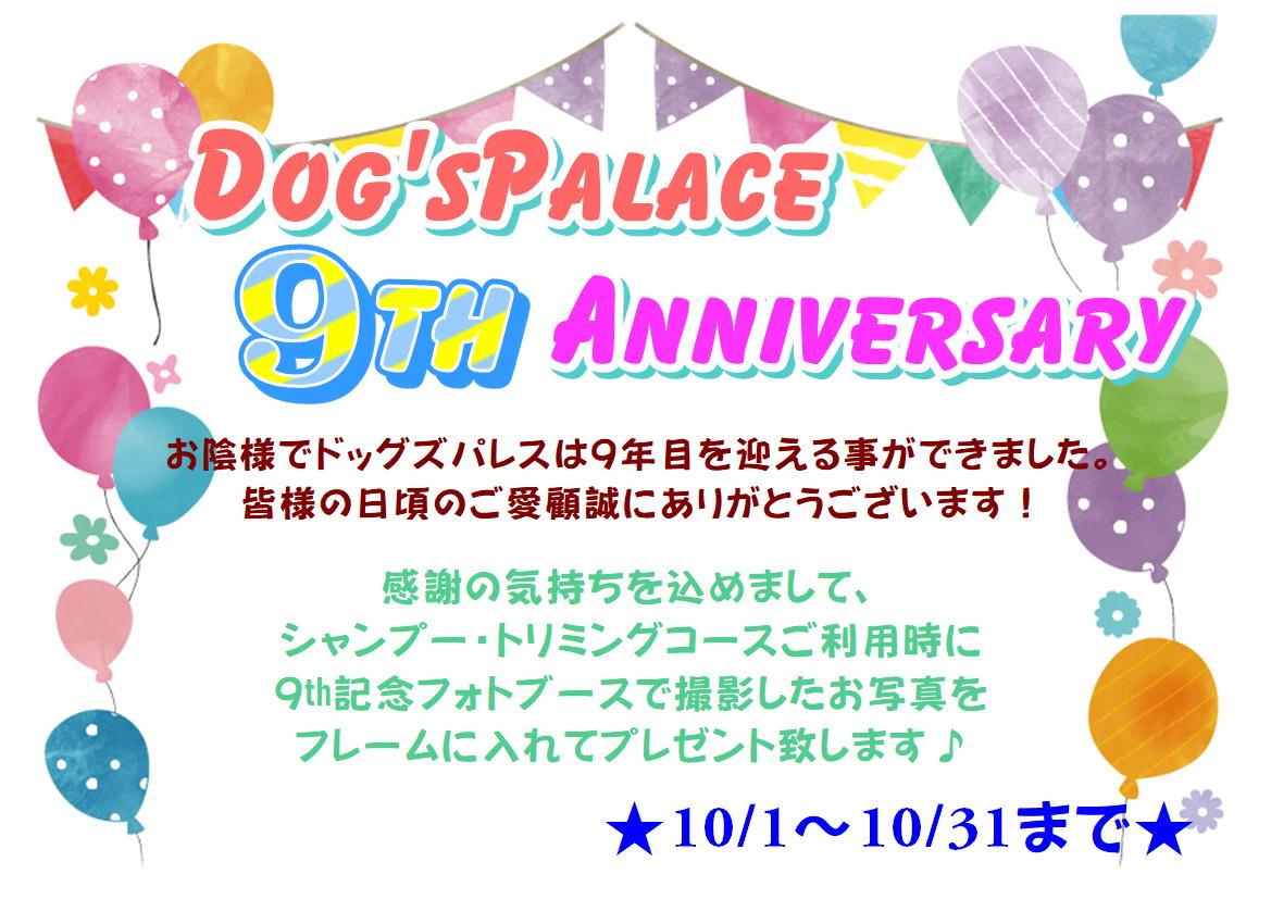 10月★9周年キャンペーン